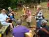 Wheatland Music Festival 2016 Cajun music jam session