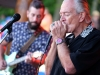 Wheatland Music Festival 2016 Charlie Musselwhite on Main Stage